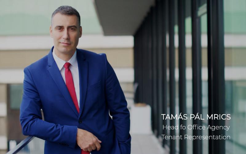 ESTON-TAMAS-PAL-MRICS_
